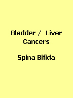 Click here to find yellow handcrafted awareness jewelry for Bladder and Liver Cancers and Spina Bifida.