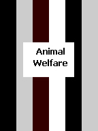 Click here to find black, gray, white and brown handcrafted awareness jewelry for Animal Welfare.